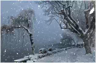 风雨为雪舞,萧瑟送秋离